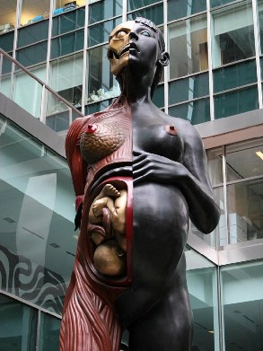 Damien  hirst – (its called Virgin Mother)