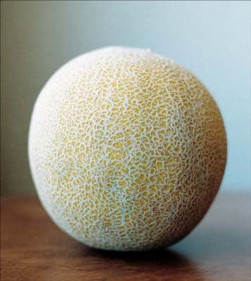 "Galia Melon – (Also accept ""cantaloupe"")"