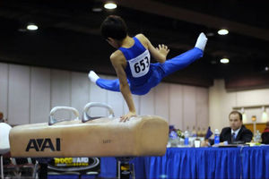 The Pommel Horse