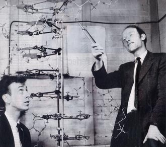 DNA scientists Watson and Crick